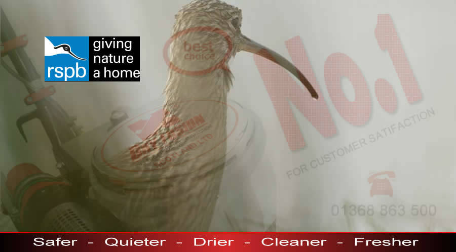 Cleaning up for RSPB